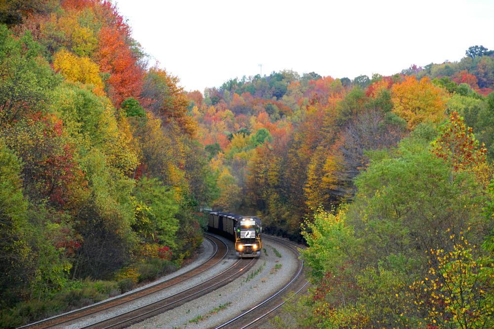 Photo in Random #train #railroad #fall #autumn