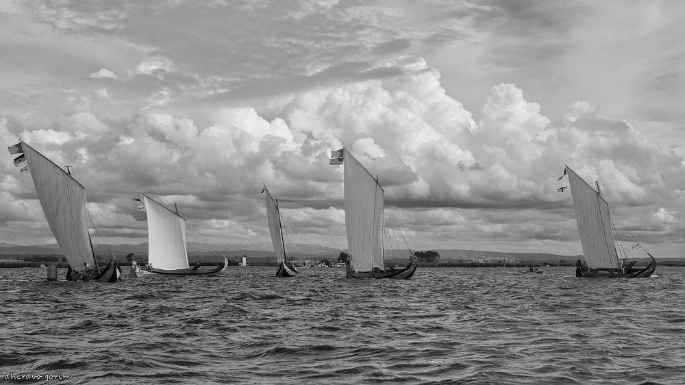 Photo in Black and White #torreira; aveiro; s.paio; moli