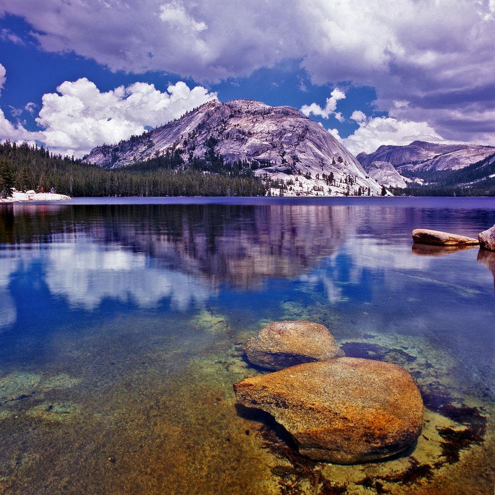 Photo in Landscape #tenaya lake #yosemite #yosemite national park