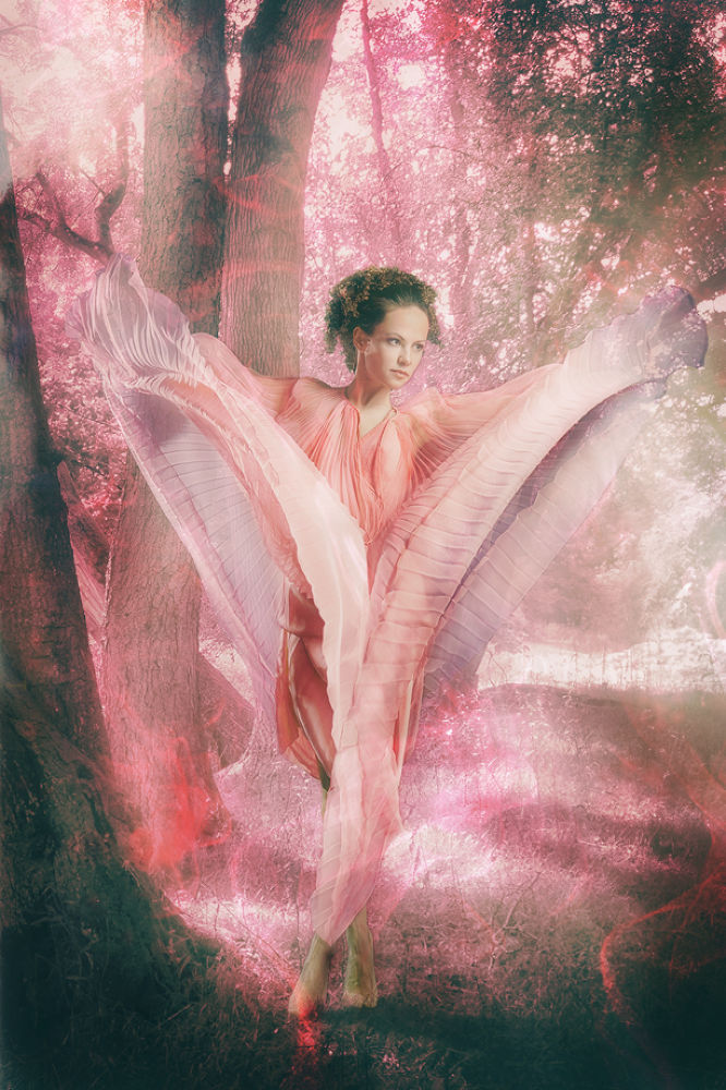 Photo in Abstract #fairy #fantasy #rose #rosa #forest #wood #wald #fee #woman #dancing