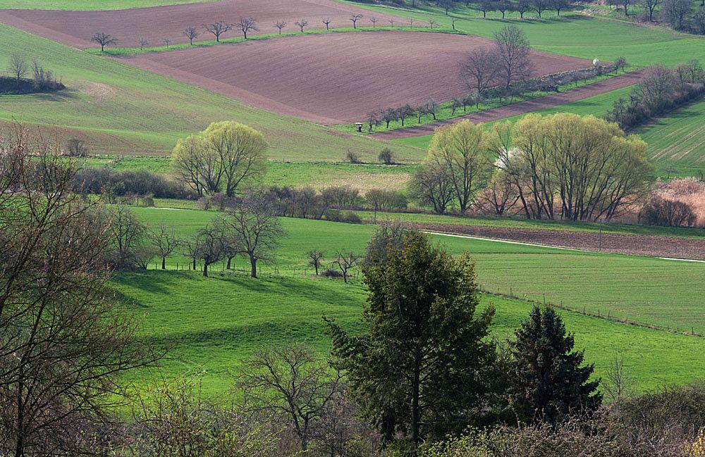 Photo in Landscape #nature #landscape #culture landscape #spring