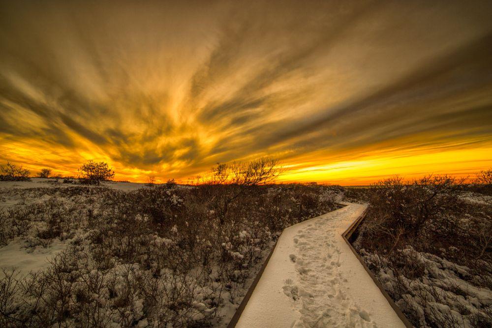 Photo in Landscape #sunset #sunrise #nature #beach #dunes #landscapes #waterscapes #snow #sun #hiking #trees #clouds #sky #orange #golden #canon #6d