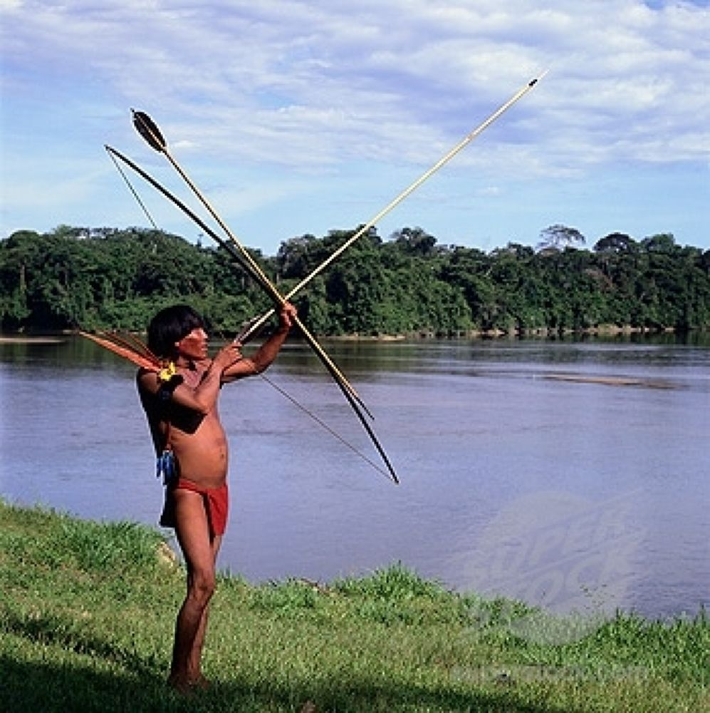 Photo in Random #amazonas
