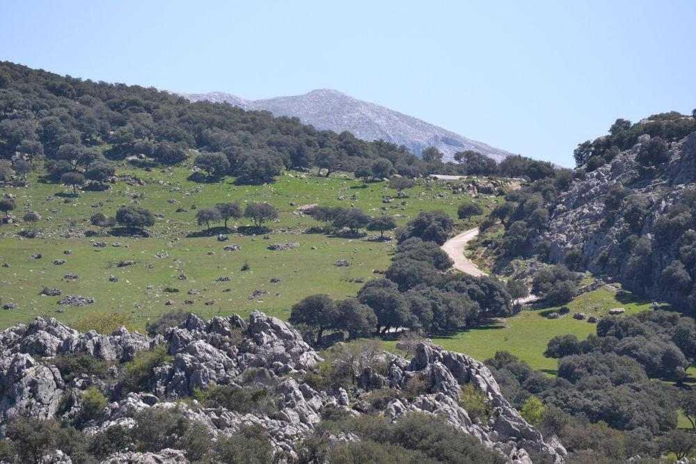Photo in Landscape #cruce de horizontes