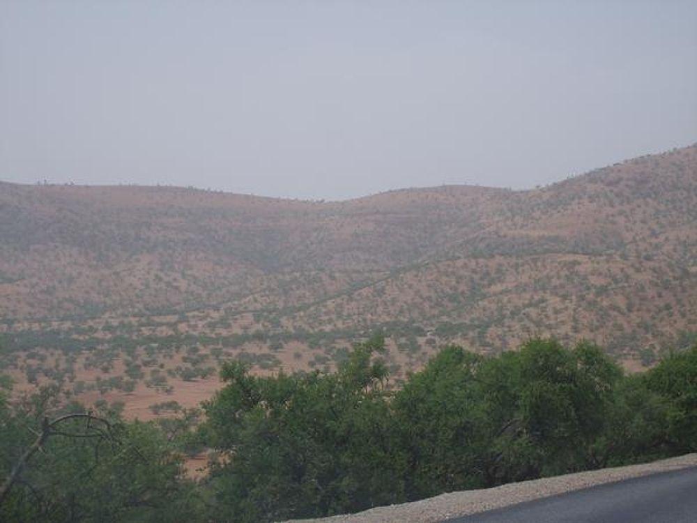 Photo in Random #algeria
