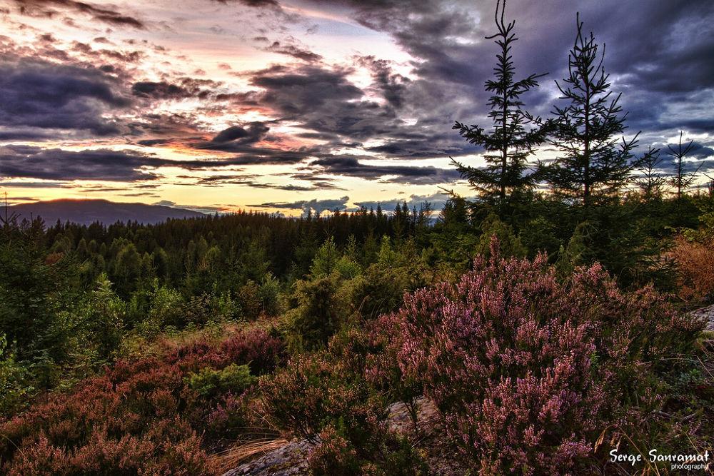 Photo in Landscape #norway #landscape #twilight #sunset