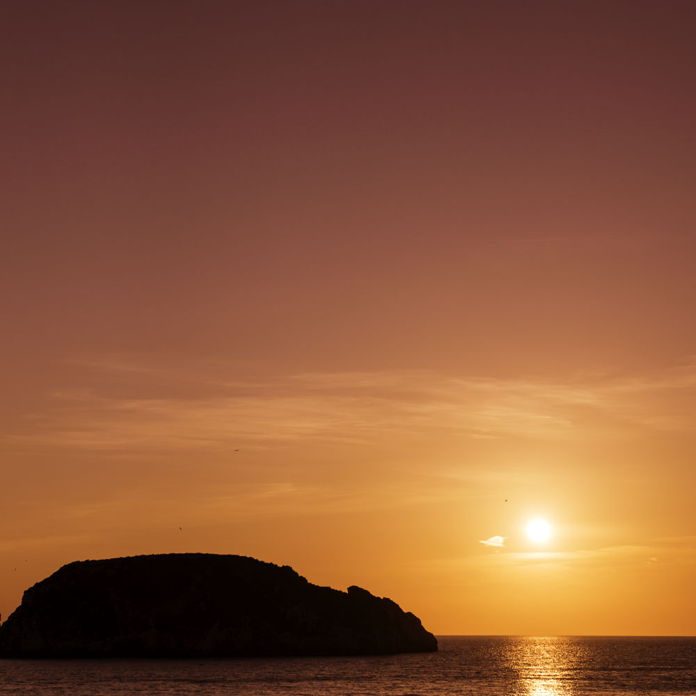 Photo in Landscape #atardecer #sol #mallorca #isla