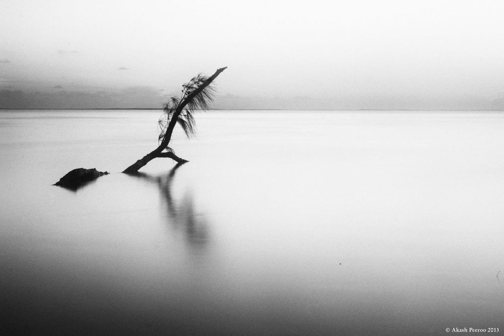 Photo in Nature #akash peeroo #mauritius #le morne #minimal #black and white #photography