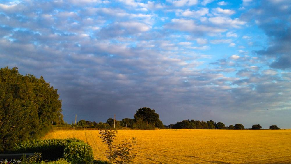 Photo in Landscape #storm #clouds #fields #stubble #sky #countryside
