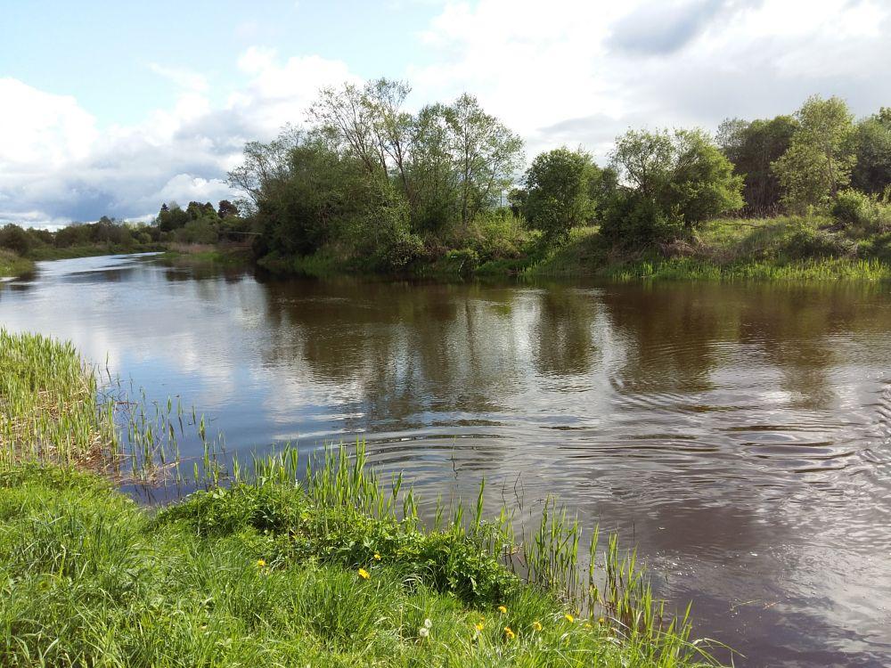 Photo in Landscape #river #nature #landscape