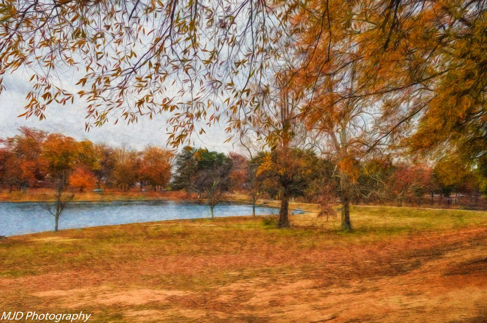 Photo in Landscape #color #trees #lake #park #fall #autumn #nature #beauty #richmond