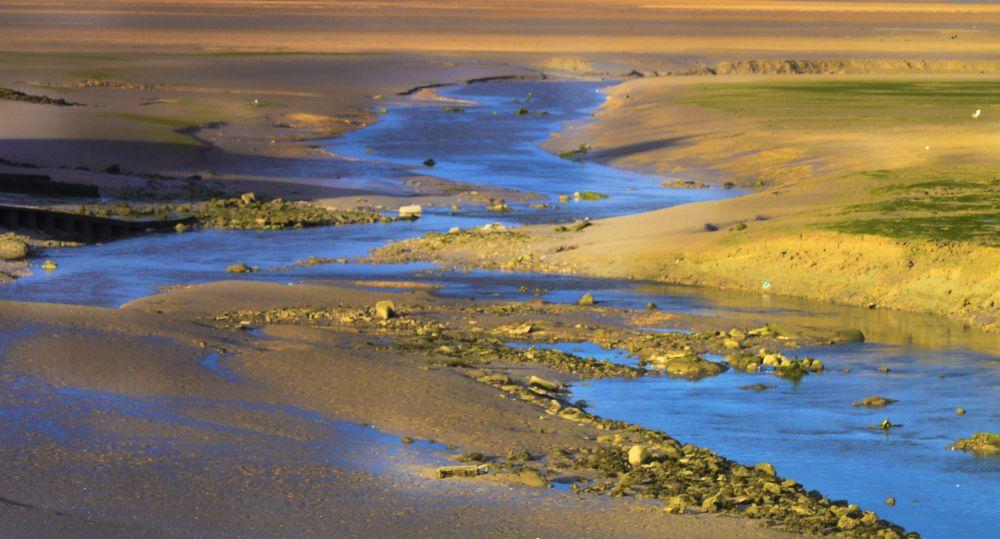 Photo in Random #landscape #randome #tide #sea