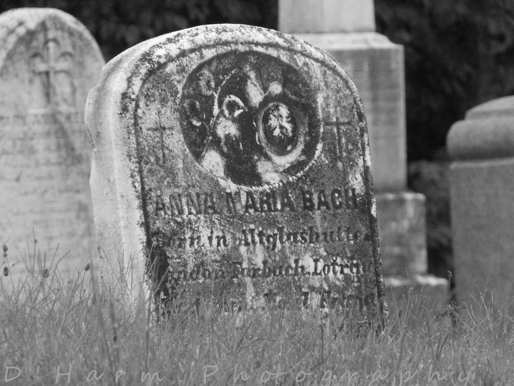Photo in Black and White #graves #gravesite #headstone #burial #bury #cemetery #death