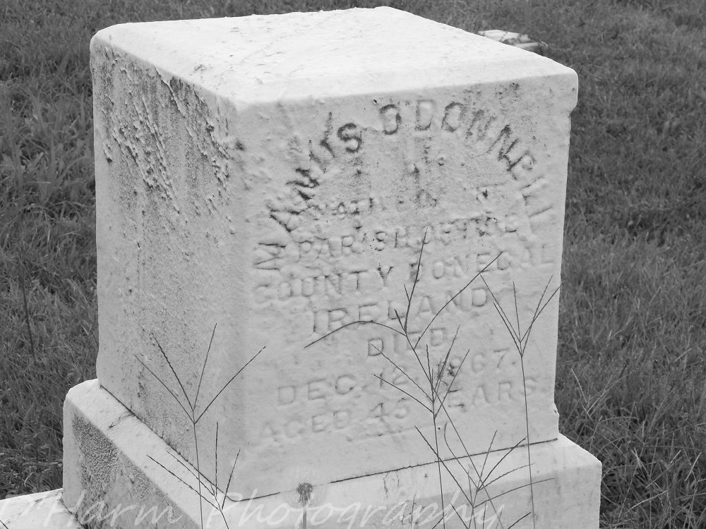 Photo in Black and White #graves #cemetery #graveside #death #headstone #burial #bury