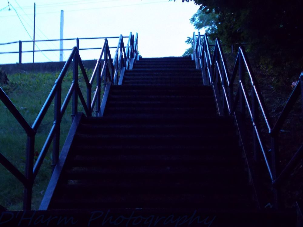 Photo in Landscape #steel #iron #steps #stairs #staircase #dusk #up
