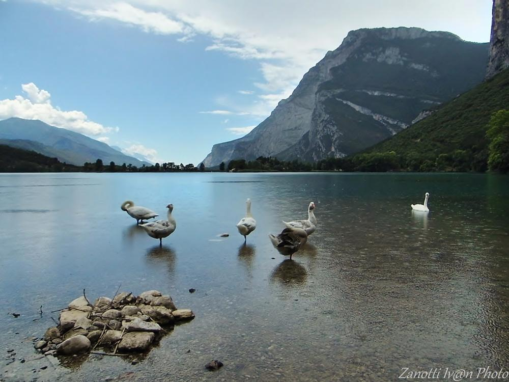 Photo in Landscape #sudtirol #lago di toblino #alto adige #lake