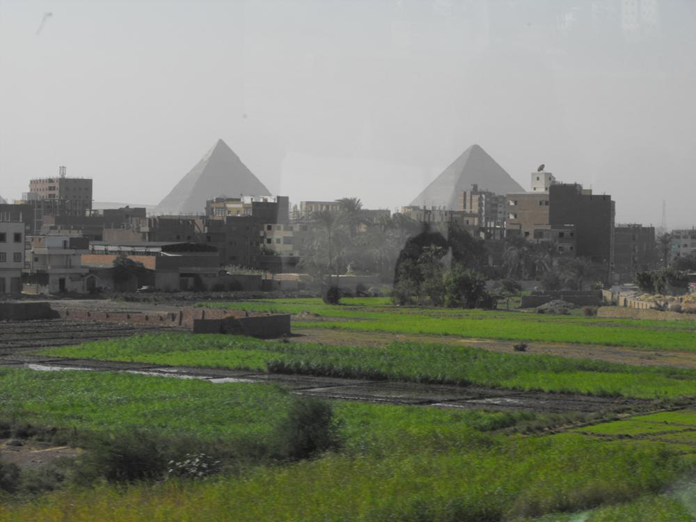 Photo in Travel #pyramids #egypt #cairo