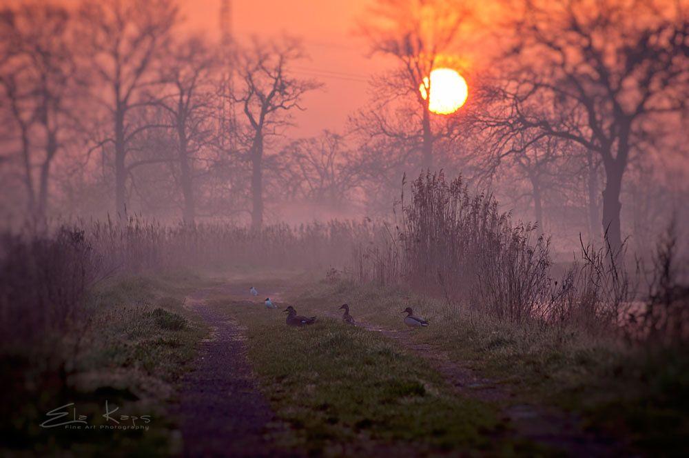 Photo in Landscape #wiosna #poranek #krajobraz #landscape