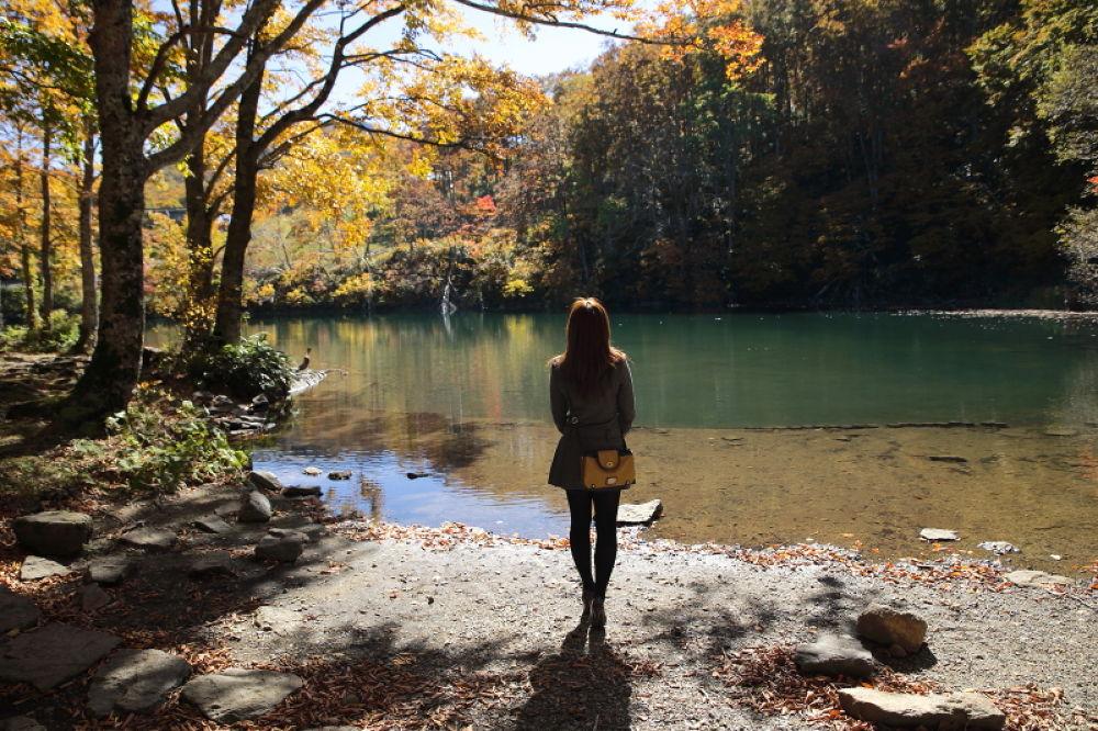 Photo in Random #autumn #lake #woman #japan #mt.zao