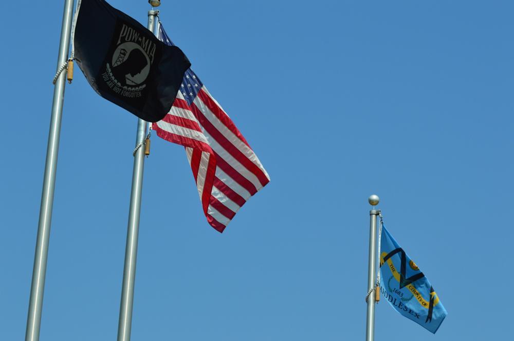 Photo in Random #flags