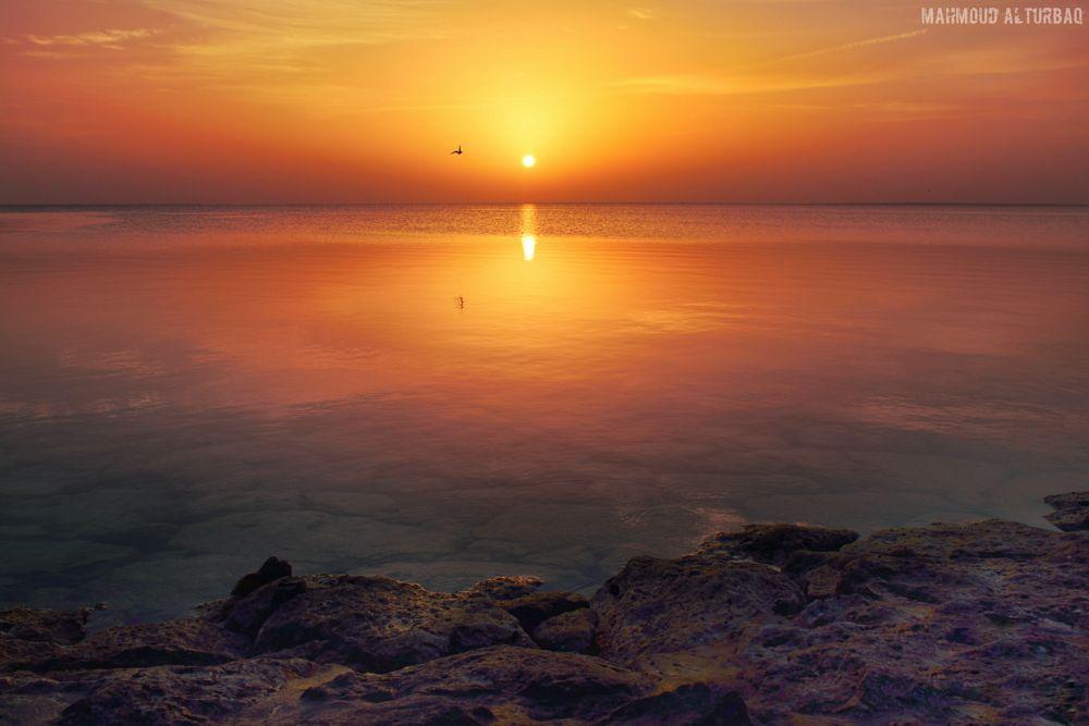 Photo in Landscape #sunrise #landscape #beach #sea