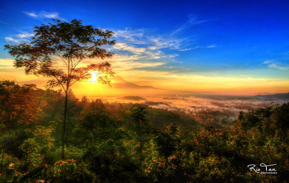 Photo in Random #ypa2013 #landscape #mountain #merapi #sunrise #forest
