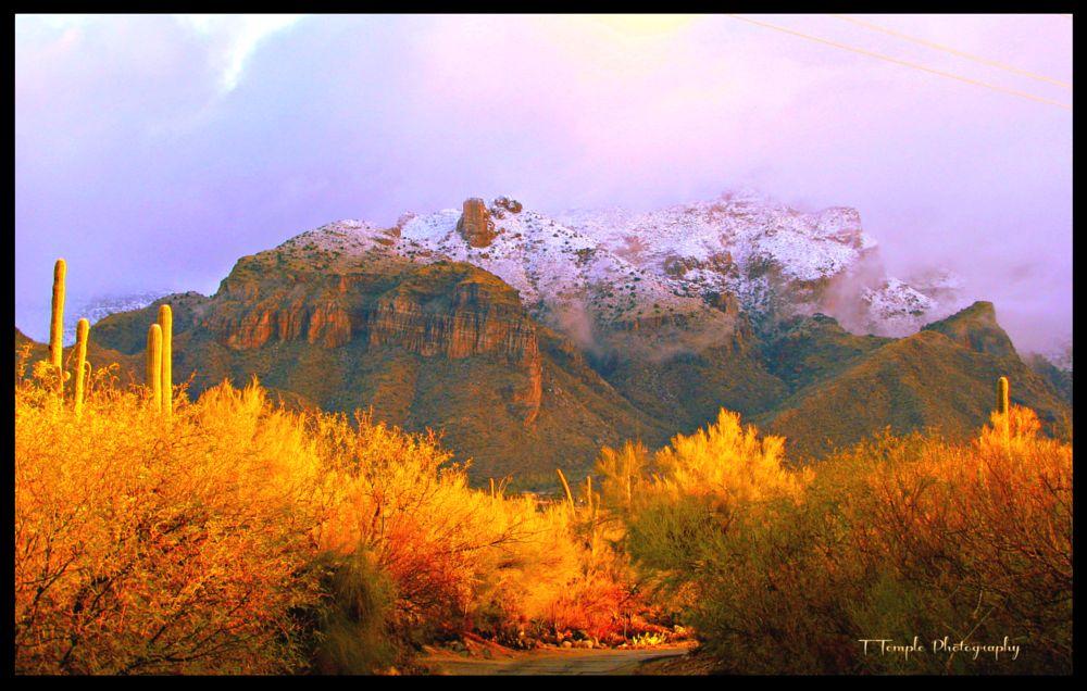 Photo in Nature #snowcapped #mountains #arizona #tucson