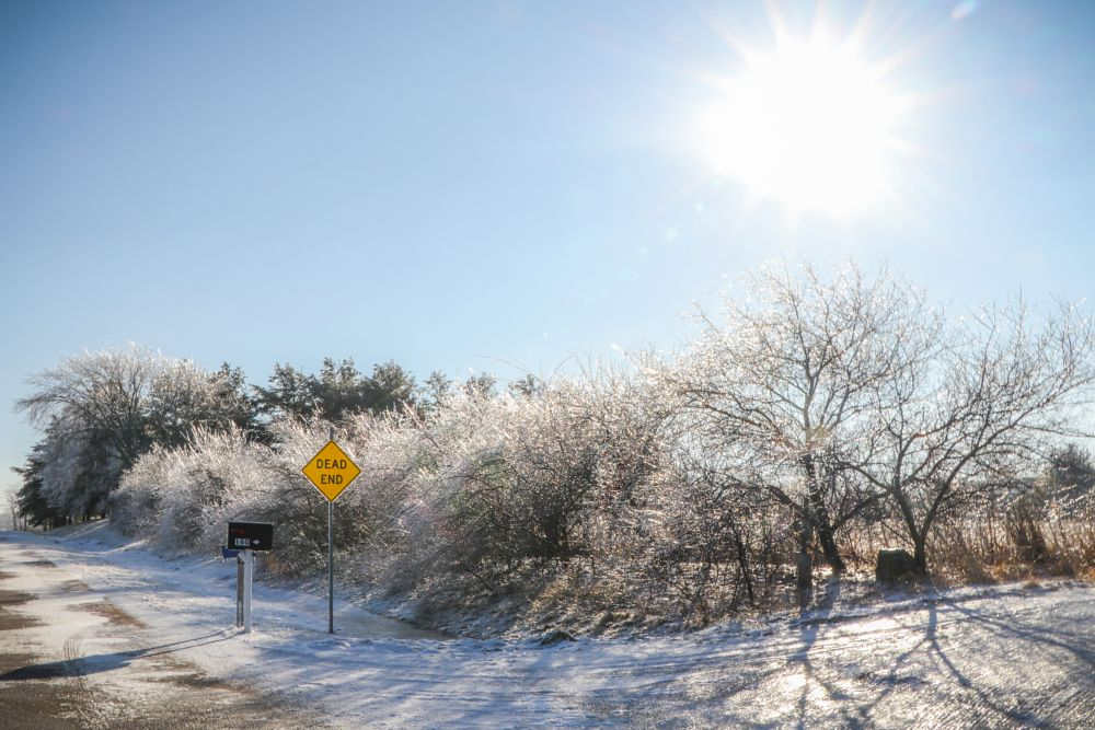 Photo in Nature #sun #snow #ice #frost #sign #trees #winter #shadows