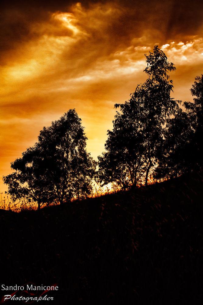Photo in Landscape #landscapes #nature