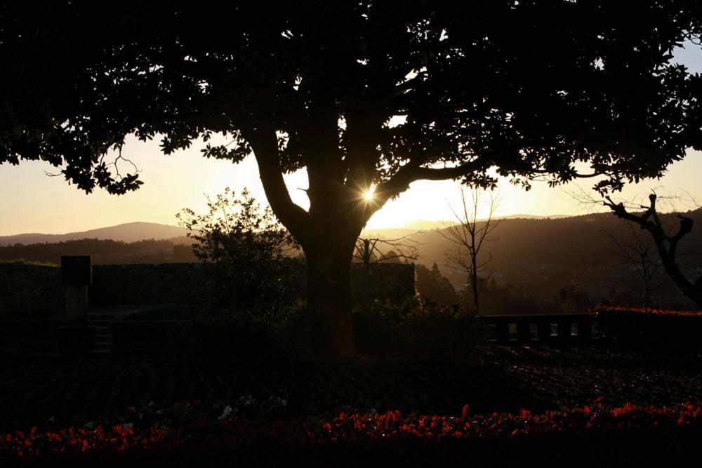 Photo in Landscape #nature #sunset #landscape #portugal