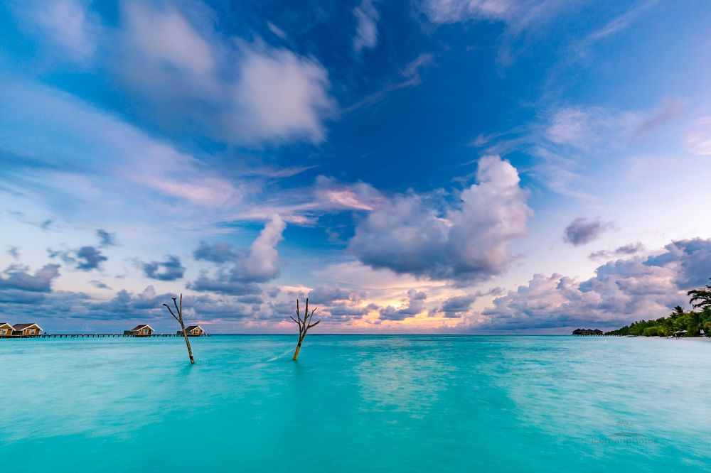 Photo in Landscape #sky #sunset #maldives #landscape #swing #hammock #palm #island #paradise #tropical #tropical beach landscape #sea #ocean #lagoon #colors #calm #zen #inspirational #travel #exotic
