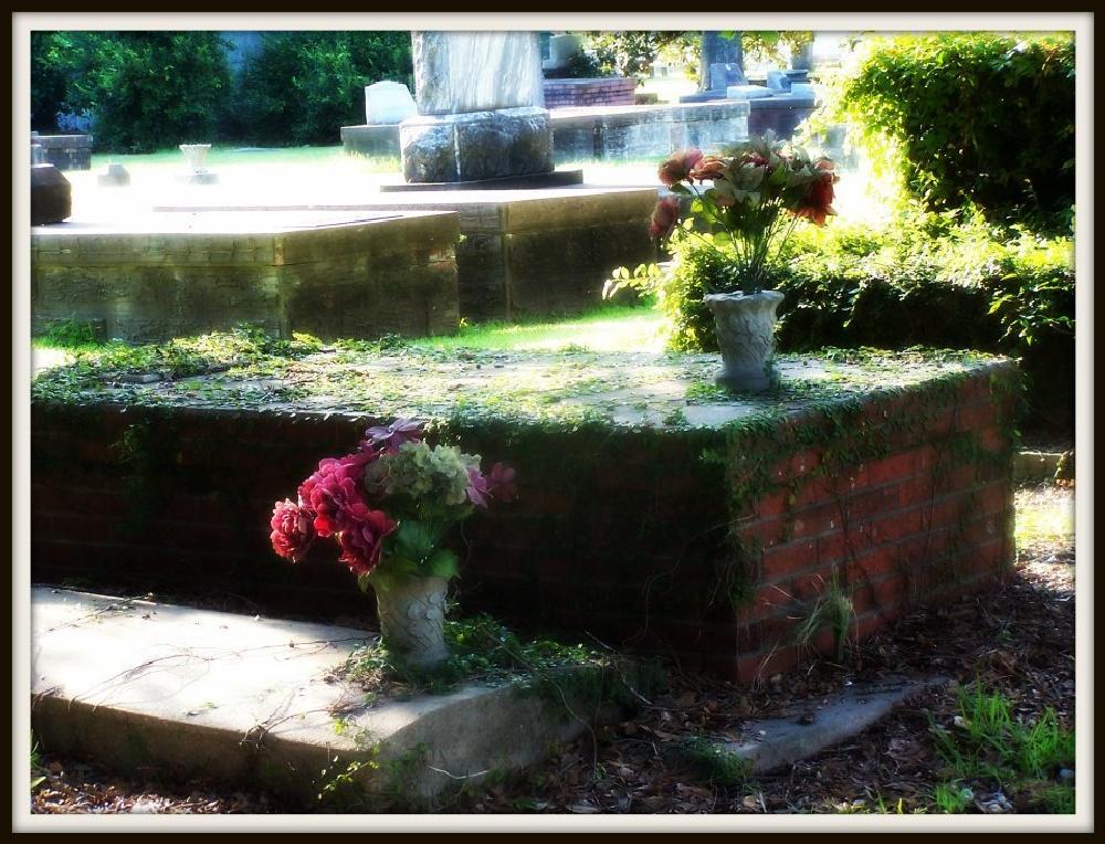 Photo in Random #cemetary #grave #graveyard #tomb #flowers #vines #crypt