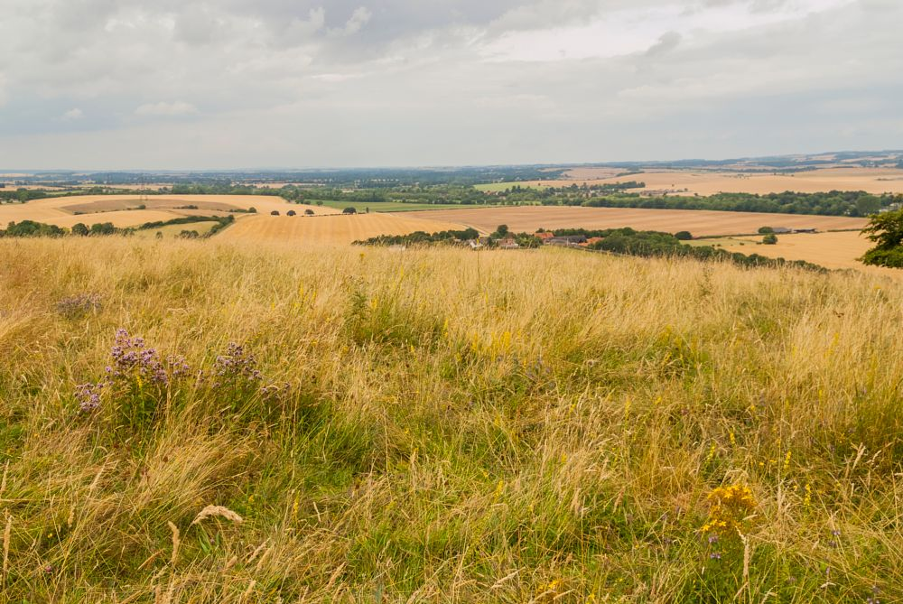 Photo in Landscape #berkshiree downs #chilterns #thames vally #landscape