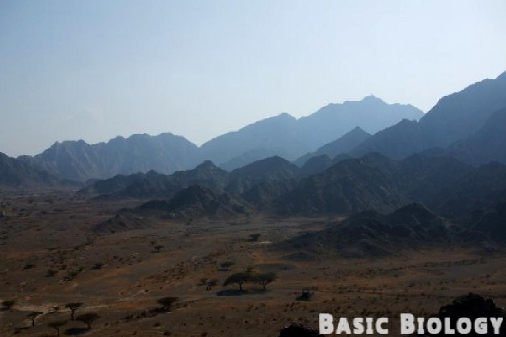 Photo in Landscape #desert #mountains