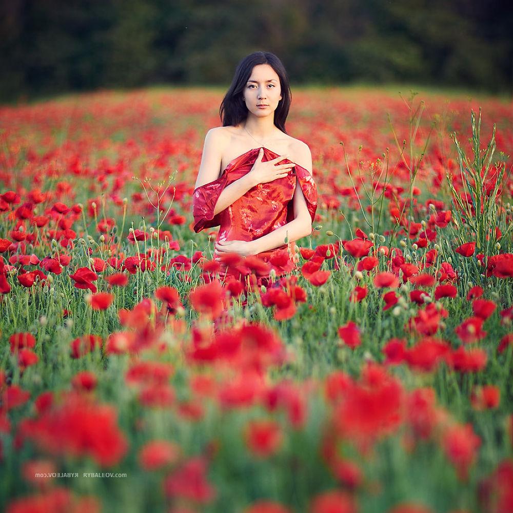 Photo in Random #ypa2013 #moldova #rybaleov #www.rybaleov.com #woman #poppies