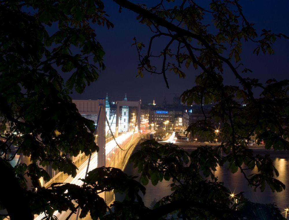 Photo in Random #budapest