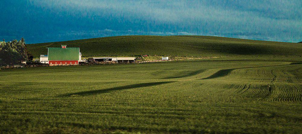 Photo in Landscape #barn #farm #red barn #shadows #fields #crops #gree #gree field #sky #shade #washington state #spring