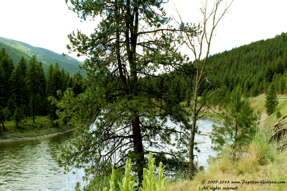 Photo in Random #landscape