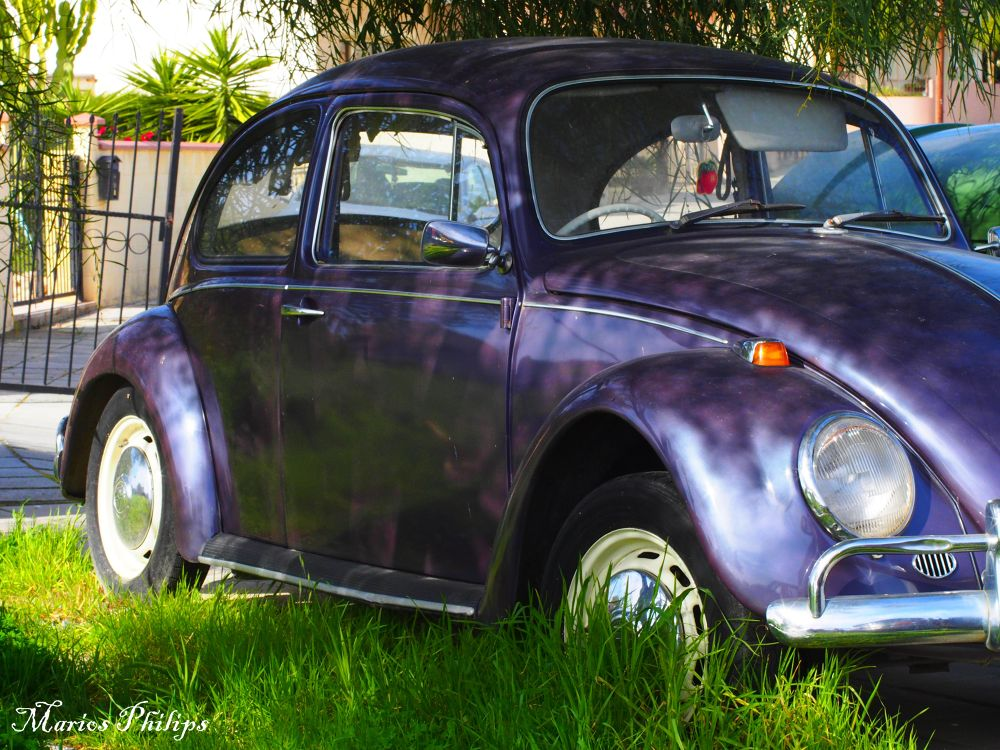 Photo in Random #car #bettle #1970s