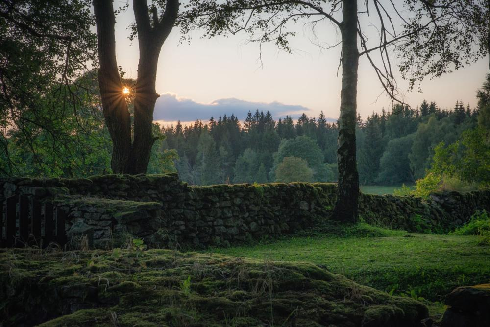 Photo in Landscape #cemetery #czech republic #wall #sunset #neighbours