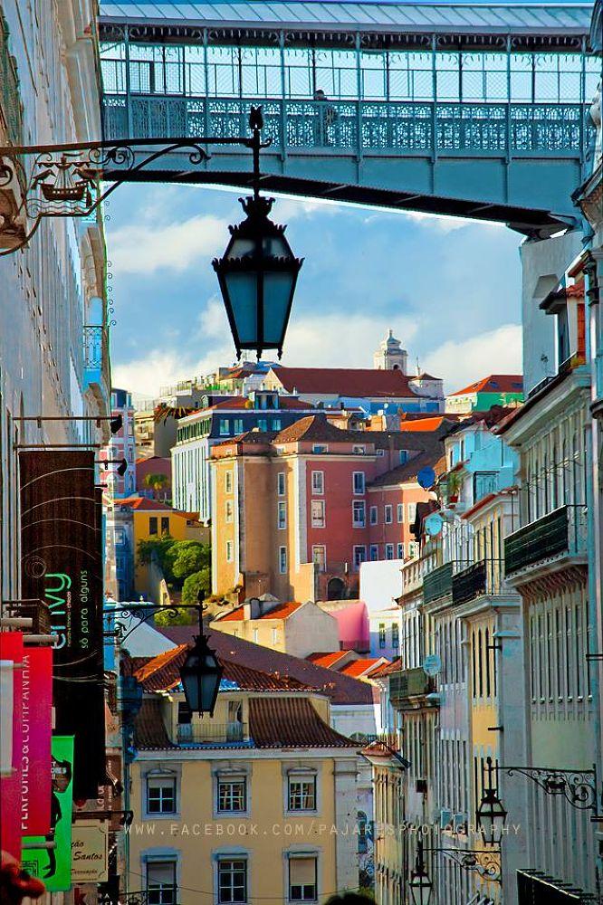 Photo in Urban #urbano #arquitectura #lisboa #capital #cidade #chiado #baixa lisboeta #turismo #canon #sigma #paisagem