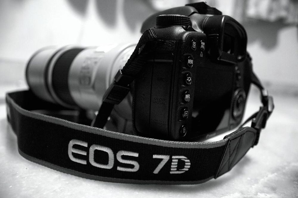 Photo in Black and White #canon #dslr #7d #300mmf 4 #l lens #b&w