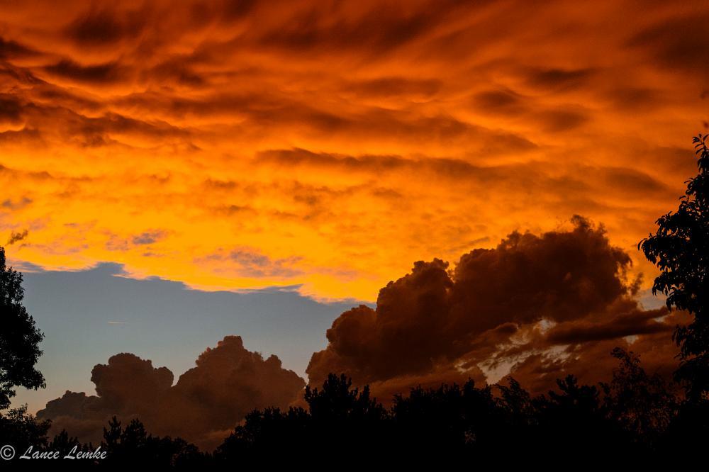 Photo in Random #birds #clouds #nature #park #storm