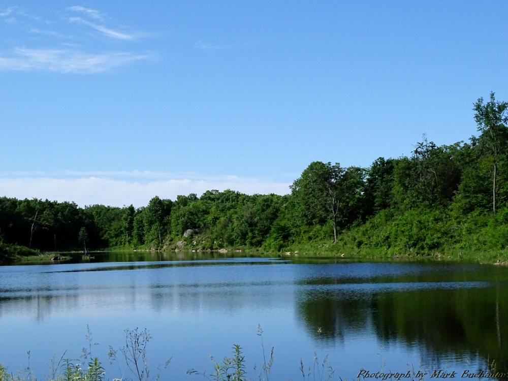 Photo in Landscape #pond #water #beaver #scenery
