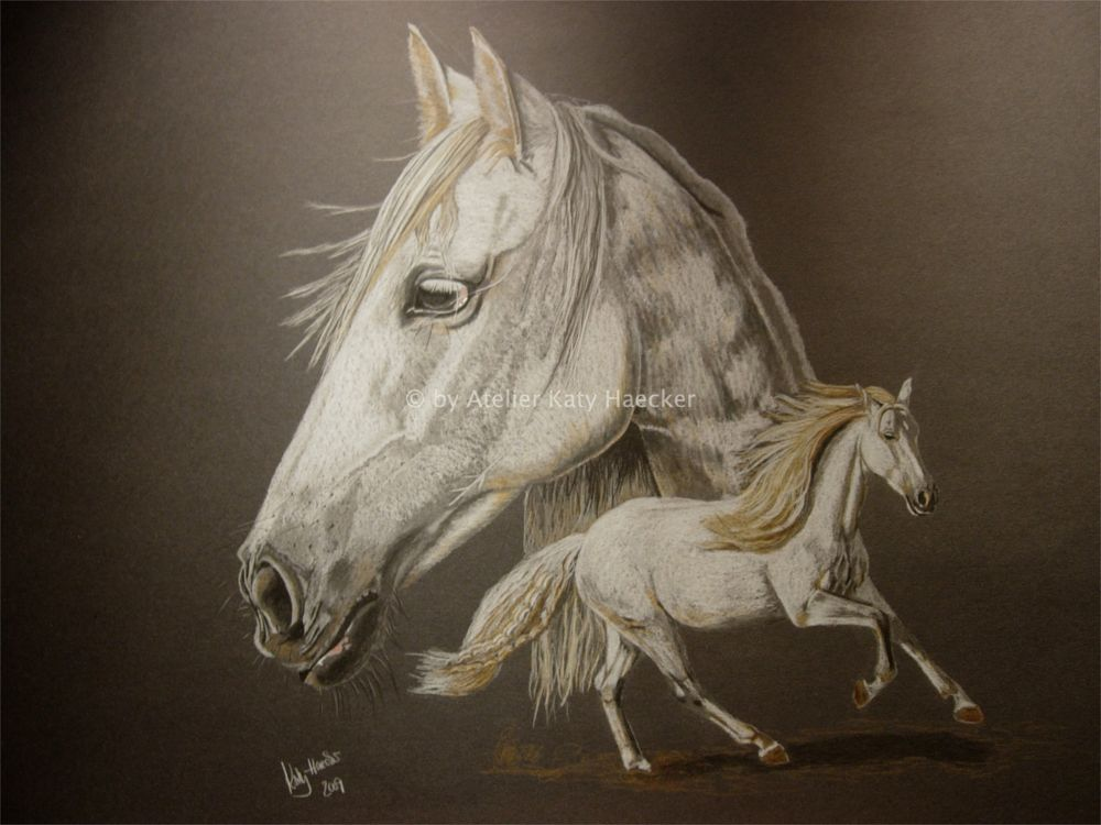 Photo in Portrait #portrait #horse #drawing