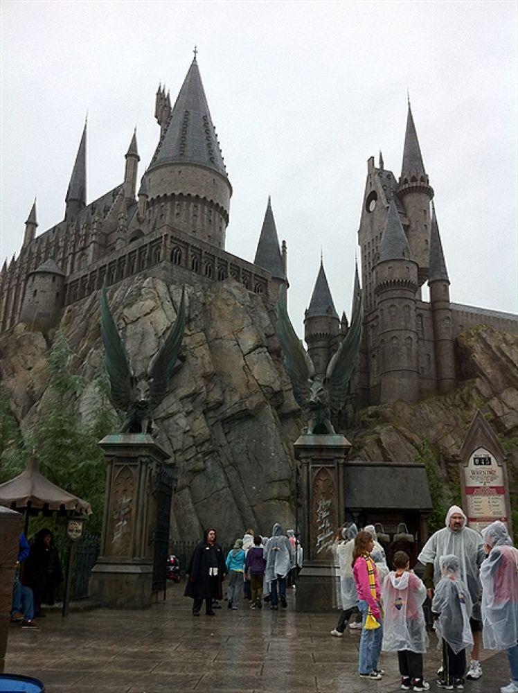 Photo in Random #gate #hogwarts