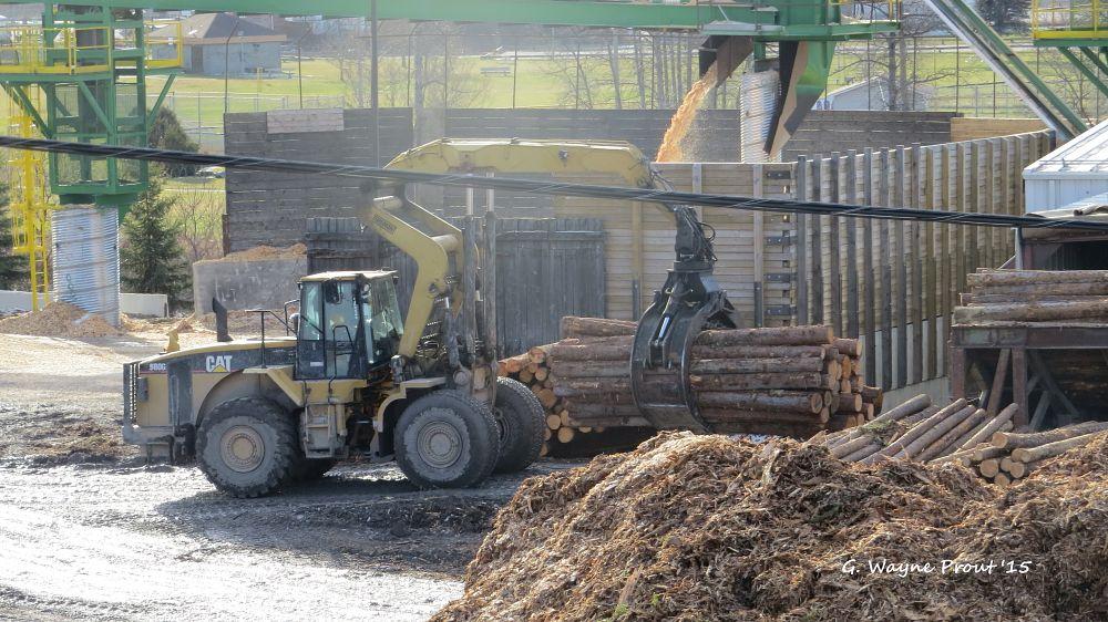 Photo in Vehicle #cat 980g log loader #cat #caterpillar #loader #log #sawmill