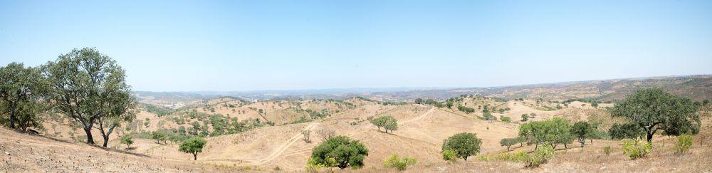 Photo in Landscape #portugal #alentejo #beja #trees #hill #sky