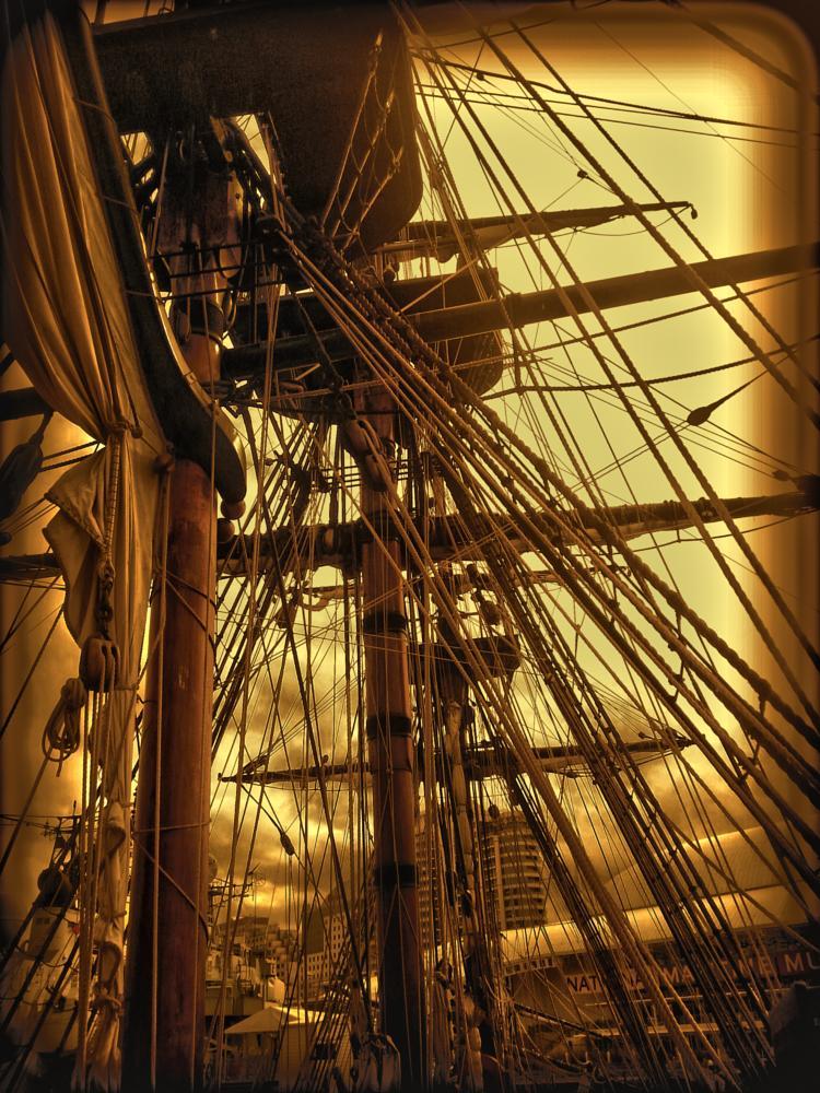 Photo in Random #bark #sailing ships #ships
