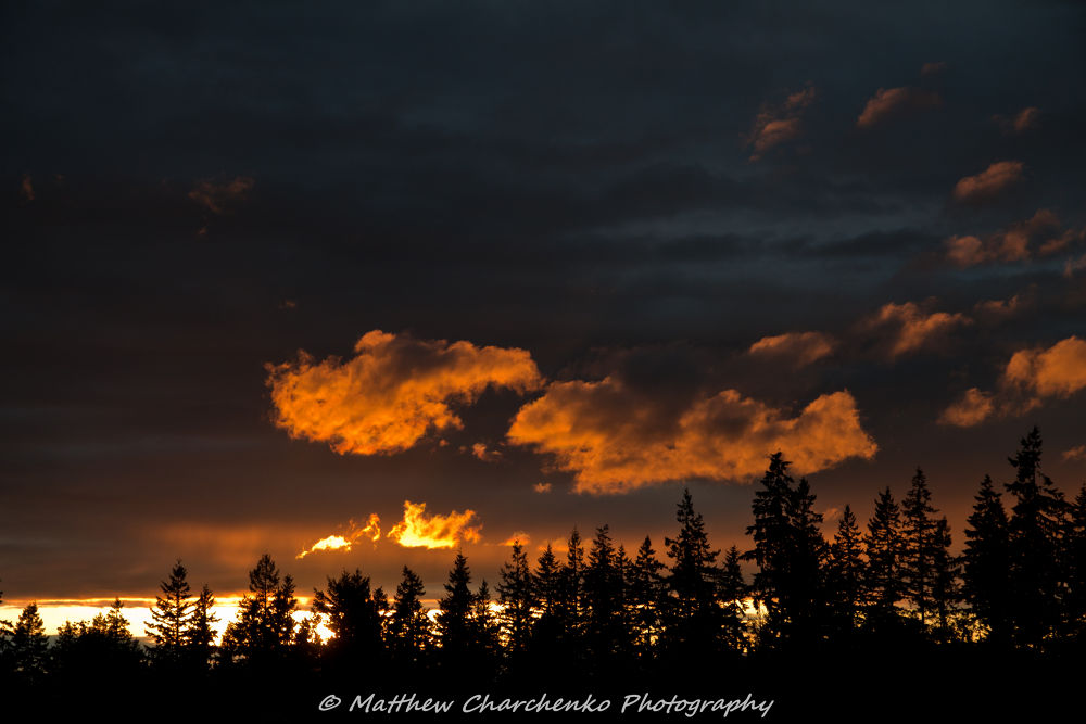 Photo in Random #sunset #sky #sun #storm #after #clouds #orange #light